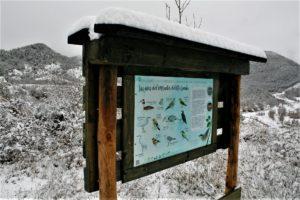 Cartel de aves ruta ornitológica